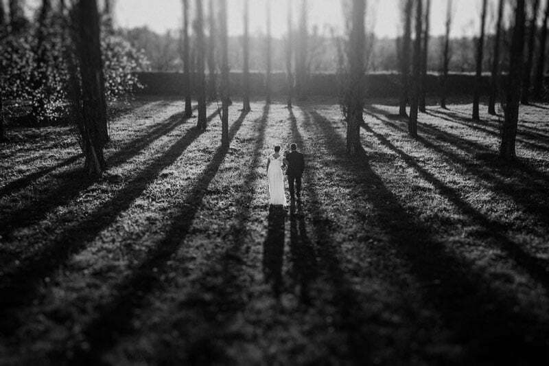 Between the Long Shadows - Benedetto Lee